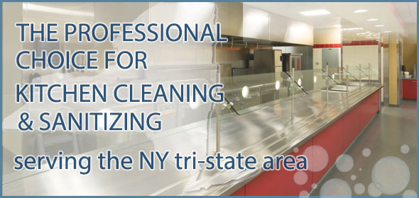The Professional Choice for Kitchen Cleaning and Sanitizing